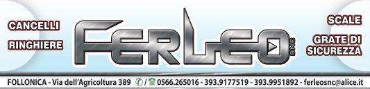 logo_ferleo